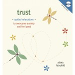 Trust CD Set at Tree of Life Journeys, Reconnect with Yourself - Meditation, Law of Attraction, Spiritual Products