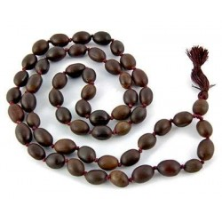 Natural Lotus Seed 54 Bead Prayer Mala Tree of Life Journeys Reconnect with Yourself - Meditation, Law of Attraction, Spiritual Products