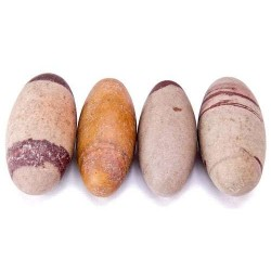 Shiva Lingam Stone - Set of 4 2 Inch Sacred Stones Tree of Life Journeys Reconnect with Yourself - Meditation, Law of Attraction, Spiritual Products