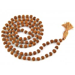 Rudraksha and Silver Prayer Mala Tree of Life Journeys Reconnect with Yourself - Meditation, Law of Attraction, Spiritual Products