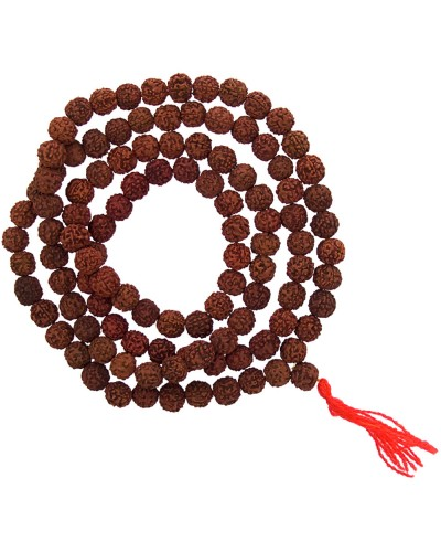 Rudraksha Mala Prayer Beads at Tree of Life Journeys, Reconnect with Yourself - Meditation, Law of Attraction, Spiritual Products