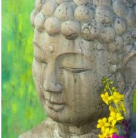 Serene Buddha Greeting Card with CD