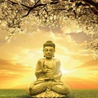 Buddha Greeting Card with CD