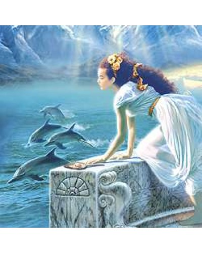 Dolphin Greeting Card with Music CD