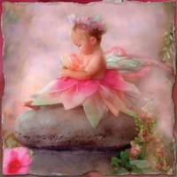 Baby Fairy Greeting Card with CD
