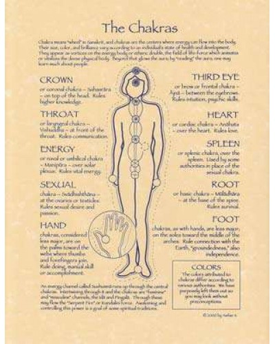 Chakras Reference Parchment Poster at Tree of Life Journeys, Reconnect with Yourself - Meditation, Law of Attraction, Spiritual Products