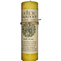 Celtic Harmony Well Being Candle with Pendant
