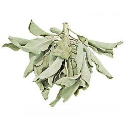 White Sage Leaves Loose Herb Tree of Life Journeys Reconnect with Yourself - Meditation, Law of Attraction, Spiritual Products